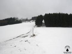Durch die breite Waldschneise verlief früher die Trase des Ennerliftes. Links die zugehörige, breite Abfahrt.