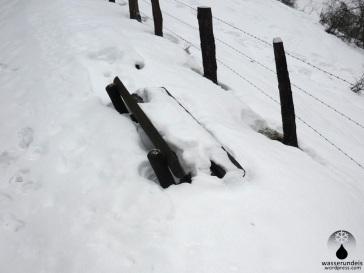 Über Schneemangel kann man sich derzeit nicht beschweren, auch wenn das weißes Gold nass und schwer ist.