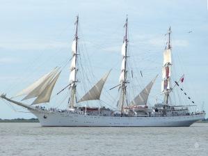 Die Dar Młodzieży, ein polnisches Segelschulschiff.