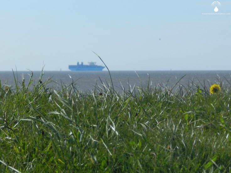 #Containerschiff Außenweser Wurster Nordseeküste.