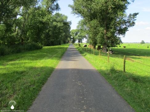 Die Schmale Inselstraße, einziger Verkehrsweg auf Harriersand.