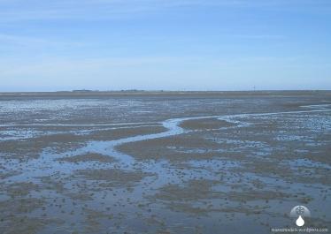 Das Ziel der Wanderung durch das Wattenmeer: Die Insel Neuwerk am Horizont.