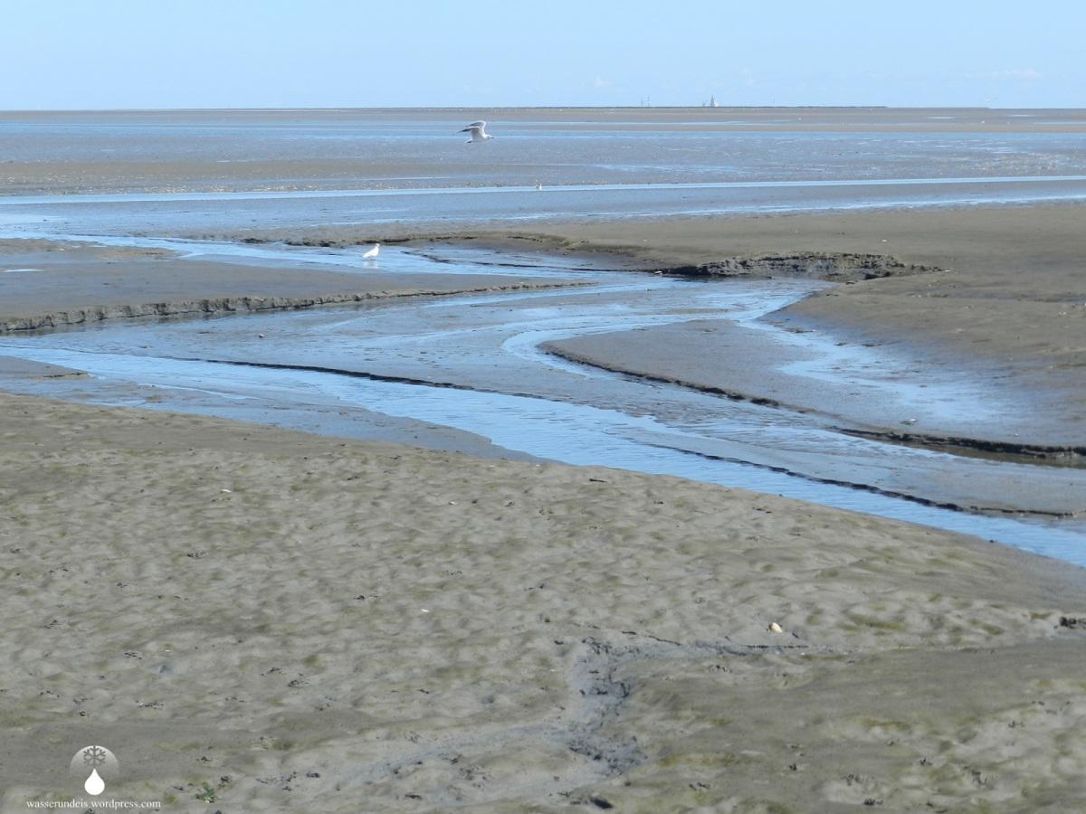 """""""Rettet das Watt"""" vor Cuxhaven"""