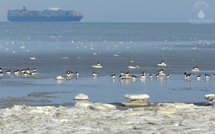 Eisschollen auf der Nordsee.