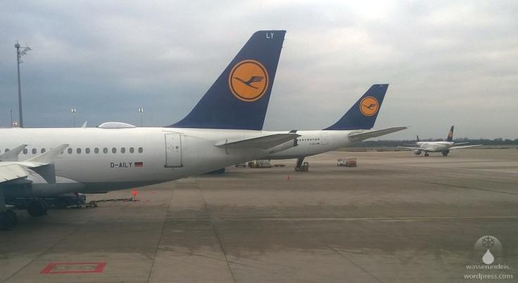 #Lufthansa Terminal in München
