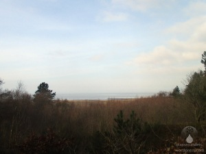 Witte Kliff Werner Wald Albertsee