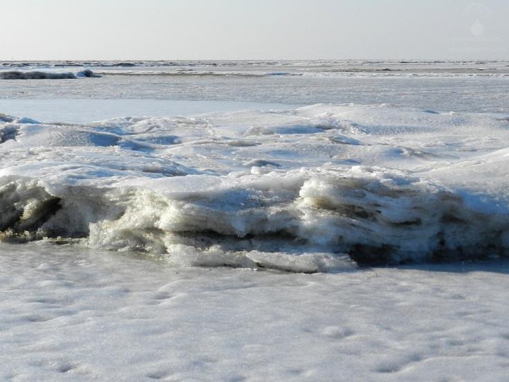 Eis Nordsee gefroren