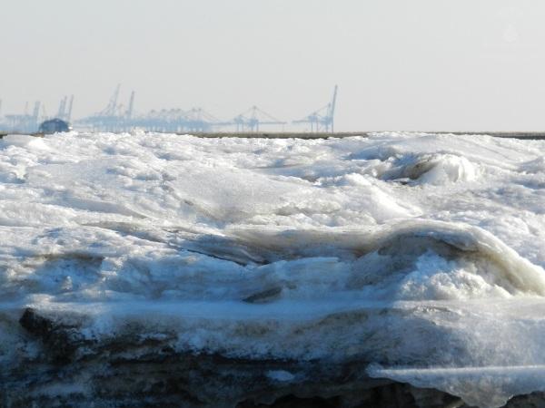 Containerbrücken Eis Bremerhaven