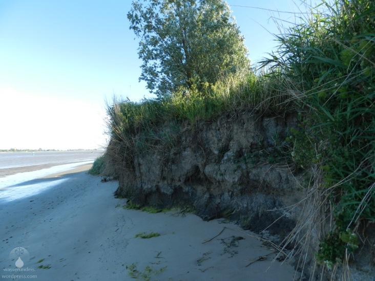 """""""Steilküste"""" bei Kleinensiel."""