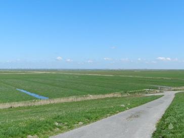 Die Elbmarschen im Deichvorland von Balje, Blick in Richtung Osten.