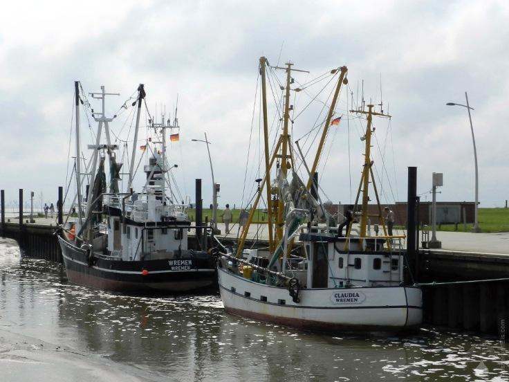 Krabbenkutter Wremen Hafen