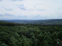 Blick in die Wälder und auf die Höhen des Arnsberger Waldes.