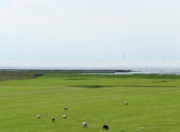 Der Offshore-Windpark Nordergründe in der Nordsee.