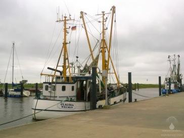 Der Krabbenkutter Claudia im Wremer Hafen - hier gibts frische Krabben direkt vom Fischer.