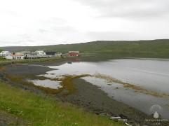 Das winzinge Dorf Bordeyri. Wale scheinen im Hrutajord keine alltägliche Angelegenheit zu sein - selbst die Einheimischen klingelten ihre Nachbarn aus den Häusern.