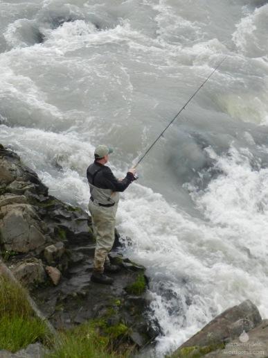 Angler am Urridafoss. Der Wasserfall ist wohl nicht hoch genug um eine Barriere für größere Fische zu sein.