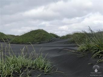 Surreale schwarze Dünen auf Stokknes.