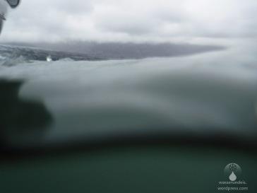 Aufnahme mit unserer neuen Unterwasserkamera - in der trüben und eiskalten Gletschermilch nur bedingt geeignet.
