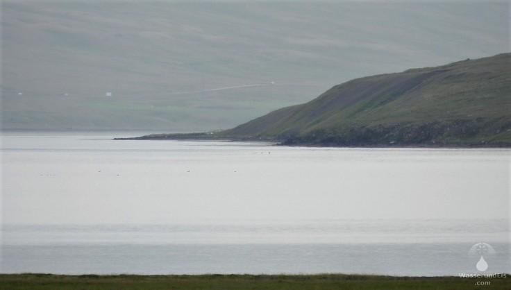 #Hrutafjord Island