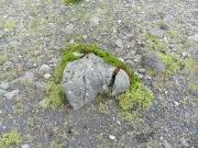 So funktioniert Erosion, Schotterbildung. Durch eine Spalte dringt Wasser in den Findling. Das Wasser gefriert, sprengt die Spalte...
