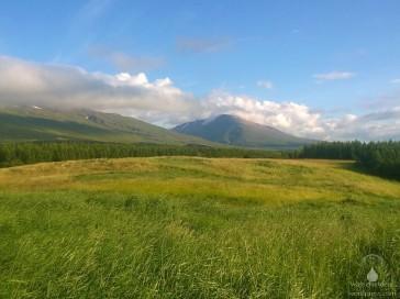 Im klimatisch günstigen Bereich rund um Egilsstaðir gibt es sogar kleine Wälder.