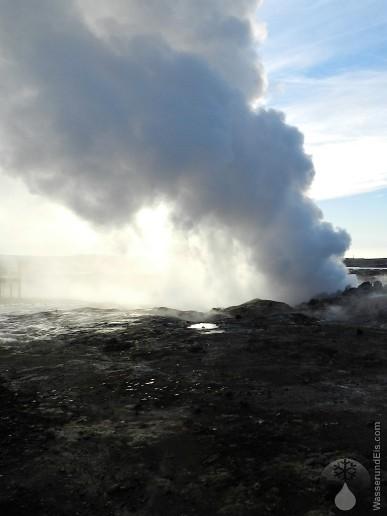 Die Dampfwolken von Gunnuhver im Gegenlicht