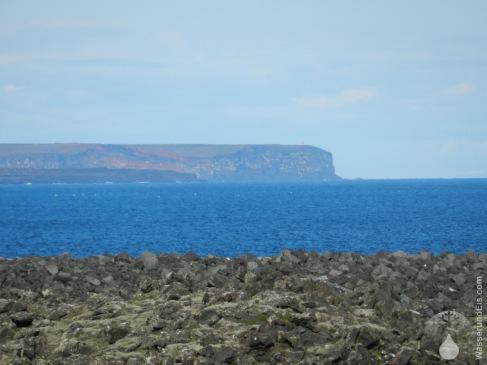 Krýsuvíkurberg Klippen Reykjanes Island
