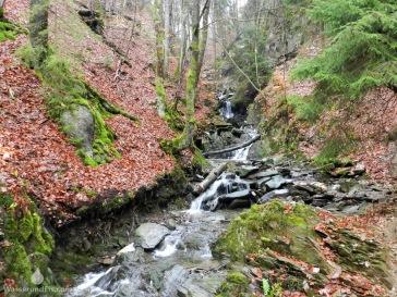 Wasserfälle Schlucht Brücke Winterberg