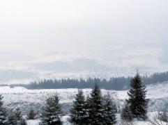 Tiefblick vom Gipfel des Clemensbergs auf das vernebelte Hildfeld.