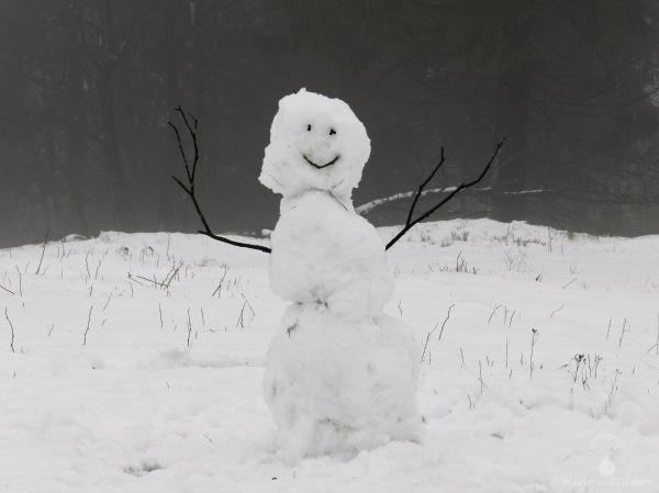 Schneemann Winter Kahler Asten