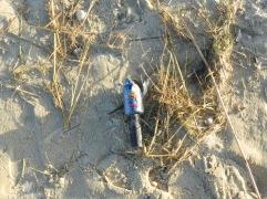 Müll Strand Silvester