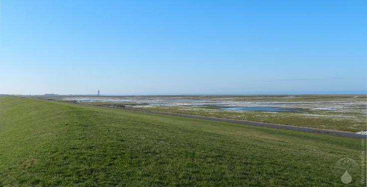 Salzwiesen Wurster Nordseeküste Strand
