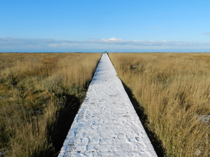 #Steg zu Wattenmeer