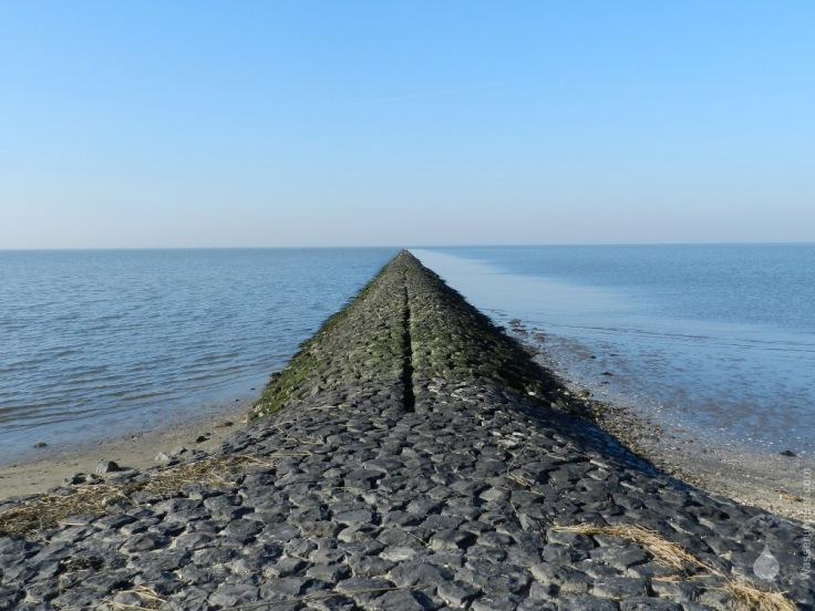 Buhne Nordsee Wattenmeer