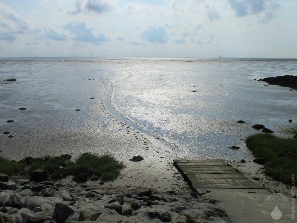 Hundeschlitten Wattenmeer Wurster Nordseeküste.