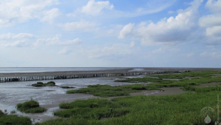 Wremen Schmarren Wattenmeer Fischerei