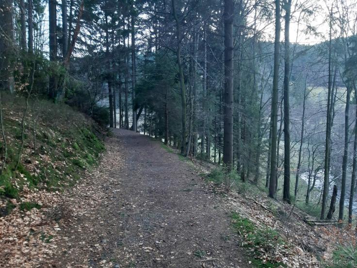 Wanderwege Willingen
