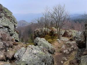 Klettersteig Bruchhauser Steine