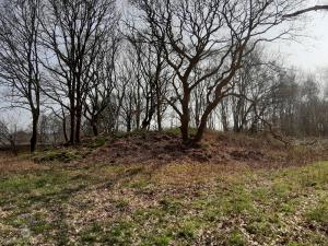 Grabhügel Sievern Hünengrab Hügelgrab