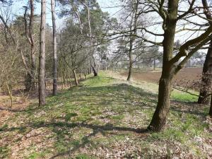 Wallanlage Ringwall Heidenstadt Sievern Geestland