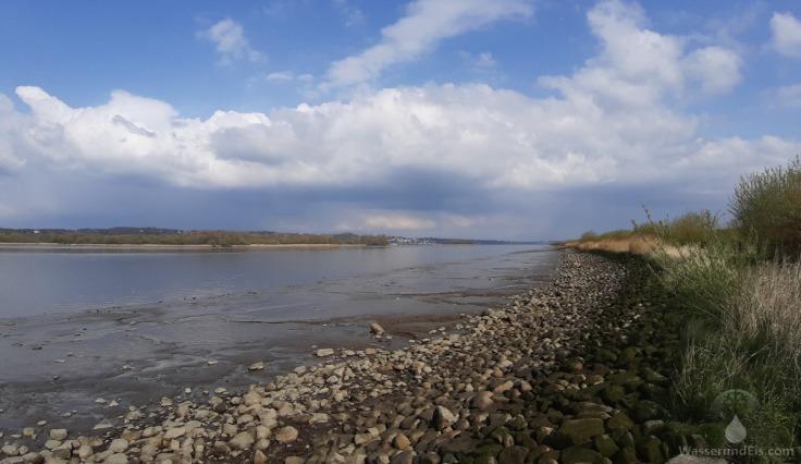 #Elbe bei Neuenfelde
