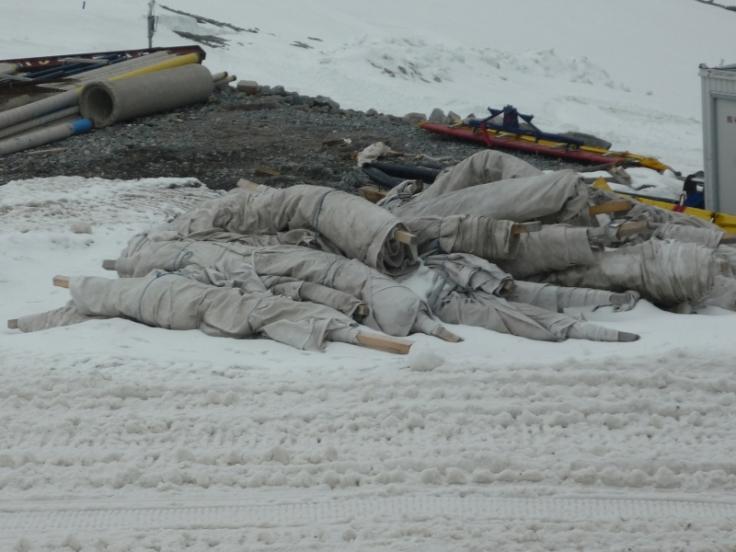 Gletschervlies Vermattung Klimawandel