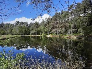 Pastorenteiche Weseler Bach Weseler Heide