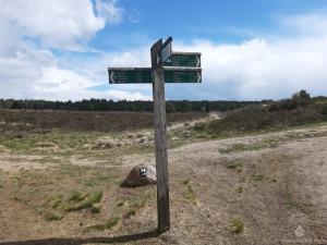 Wegweiser Wandern Lüneburger Heide