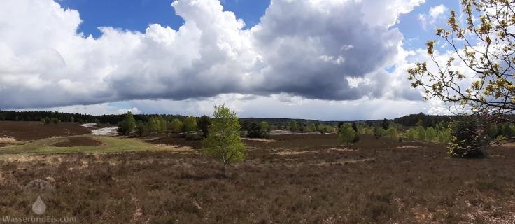 Aussichtspunkt in der Lüneburger Heide bei Undeloh.