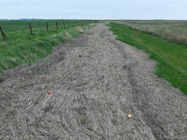 Plastikmüll Nordsee Müll