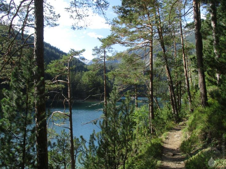 Rundwanderweg Blindsee Tirol Fernpass