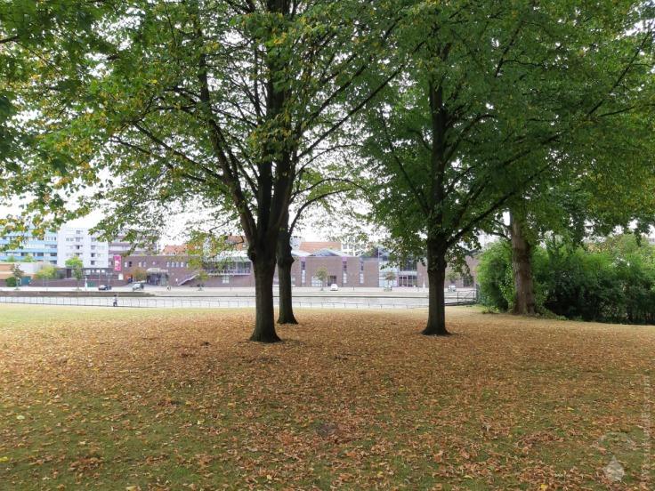 #Dürre in Bremerhaven