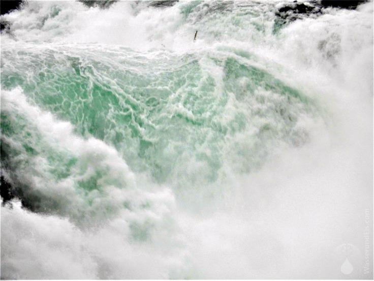 Wassermassen des Rheinfalls.