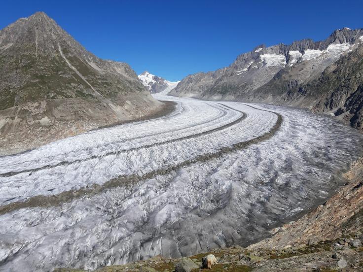 #Großer Aletschgletscher September 2019